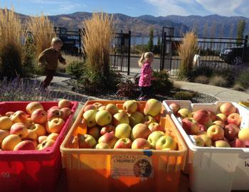 Apple Cider Press The Lookout at Lake Chelan